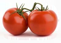 tomatoss